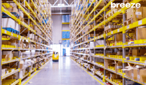 How to Become a Leader in Electronics Wholesale & Distribution Market?